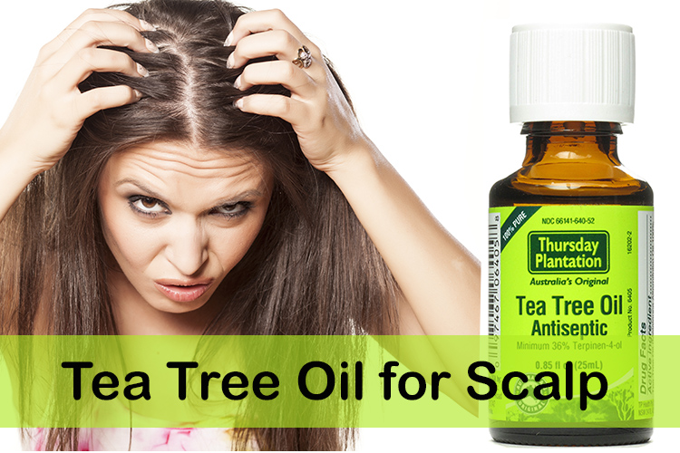 Tea-Tree-Oil-for-Scalp