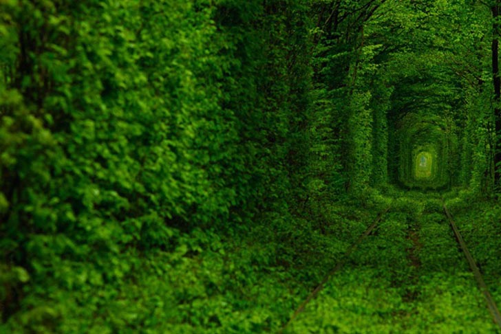 The Tunnel of Love Ukrainian