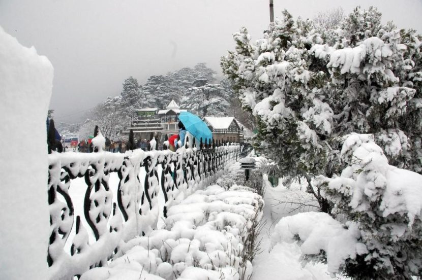 Top 10 Resorts For Honeymoon Couples In Shimla