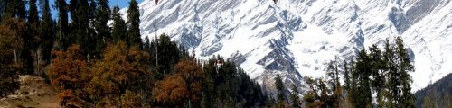 Solang -Valley-Manali
