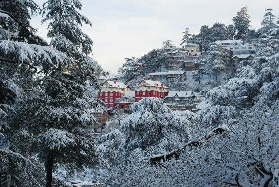 5 Best Honeymoon Destinations in Himachal Pradesh
