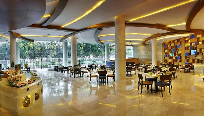 Top 10 Best Dining Places In Chandigarh